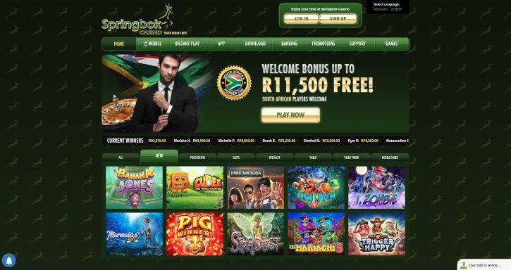 Springbok Caisno bonus